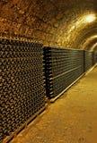 De kelder van de wijnstok stock afbeelding