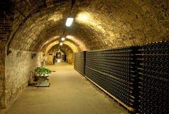 De kelder van de wijnstok Stock Foto's