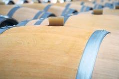 De kelders van de wijn Stock Afbeelding