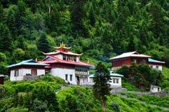 De kenmerken van China Tibet van het gebouw stock foto's