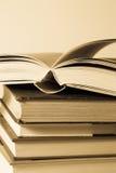 De kennis is in boeken stock foto