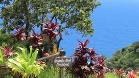 De Keopukarots overziet mening, Tuin van Eden, Weg aan Hana, Maui, Hawaï, de V.S. stock footage