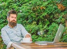 De kerel drinkt groene de takkenachtergrond van het koffie ontspannende terras Prettig ogenblik Neem ogenblik om te denken Te ont royalty-vrije stock afbeelding