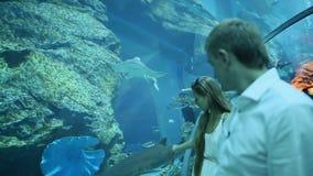 De kerel en het meisje worden verrukt door verschillende vissen drijvend in een ondergronds aquarium stock video