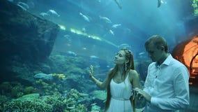 De kerel en het meisje worden verrukt door verschillende vissen drijvend in een ondergronds aquarium stock videobeelden