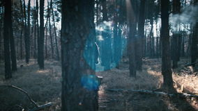 De kerel gaat door het bos met een toorts stock footage