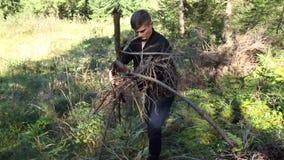 De kerel in het hout in de bergen verzamelt brandhout voor een brand op een zonnige dag stock video