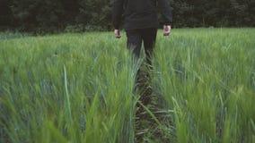 De kerel in het zwarte lopen op het gebied van tarwe Langzame Motie stock video