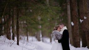 De kerel kust zacht zijn meisje in een mooi sneeuw de winter bos Groot schot als in koffie stock footage