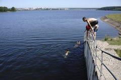 De kerels springen in het water die een bad - Rusland nemen - Berezniki op 31 Juli 2017 Stock Afbeeldingen