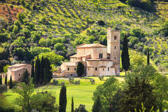 De kerk en de olijfboom van Santantimo montalcino Orcia, Toscanië, het royalty-vrije stock afbeeldingen