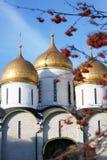 De Kerk van Dormition Moskou het Kremlin De Plaats van de Erfenis van de Wereld van Unesco Stock Fotografie