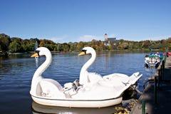 De Kerk van het kasteel en de Vijver van het Kasteel in Chemnitz Royalty-vrije Stock Foto's
