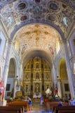 De kerk van Santo Domingo de Guzman in Oaxaca Mexico Stock Afbeeldingen