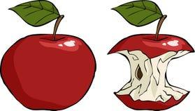 De kern van de appel Stock Fotografie