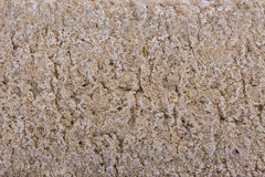 De kernachtige broden van de oppervlakterogge Stock Afbeelding