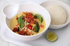 De kerrie Indisch Aziatisch voedsel van de kip Royalty-vrije Stock Foto's