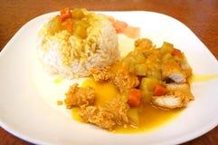 De Kerrie van de kip met rijst Royalty-vrije Stock Afbeelding