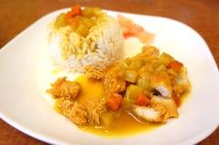 De Kerrie van de kip met rijst Royalty-vrije Stock Foto's