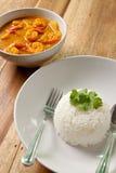 De kerrie van garnalen met rijst. Royalty-vrije Stock Foto's