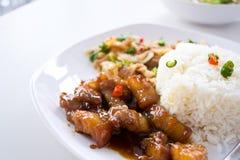 De kerrie van het rundvlees met rijst, Thais voedsel Royalty-vrije Stock Foto