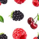 De kers en de frambozen naadloos patroon van Blackberry 3d realistische vectorbessen vector illustratie