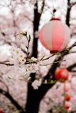 De kers komt tot bloei en Sakura Festival-lantaarns langs Shingashi-Rivier, Kawagoe, Saitama, Japan in de lente Royalty-vrije Stock Fotografie