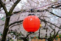 De kers komt tot bloei en Sakura Festival-lantaarns langs Shingashi-Rivier, Kawagoe, Saitama, Japan in de lente Stock Foto's