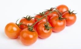 De kers van de tomaat Royalty-vrije Stock Afbeelding