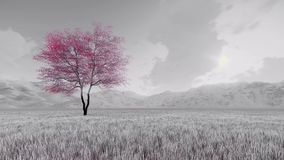 De kersenboom van fantasiesakura in bloei 4K stock illustratie