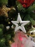 De Kerstboom en de ster stock afbeeldingen
