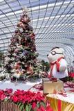 De kerstboom, giften en gelukkig draagt Royalty-vrije Stock Foto