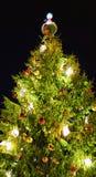 De kerstboom riep Schatten van de Elf in oud Riga Stock Foto's