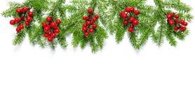 De kerstboom vertakt zich de banner van de Vakantiedecoratie royalty-vrije stock afbeelding