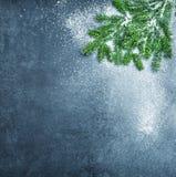 De kerstboom vertakt zich de vakantie donkere achtergrond van de sneeuwwinter Royalty-vrije Stock Foto's