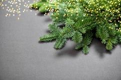De kerstboom vertakt zich gouden lichten donkere achtergrond Stock Foto's
