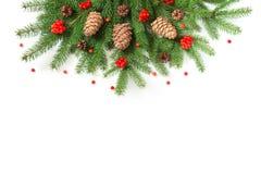 De kerstboom vertakt zich met cederkegels en rode bessen van viburnum op een witte achtergrond Mening van hierboven Royalty-vrije Stock Afbeeldingen