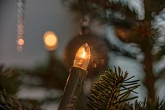 De Kerstboomverlichting bij de Nordmann-spar Royalty-vrije Stock Afbeeldingen