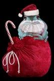 De Kerstman van Froggy Stock Foto