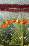 De Kerstmisachtergrond met rood en geel ornament op een zwarte schittert geweven achtergrond royalty-vrije stock foto