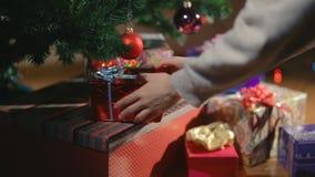 De Kerstmishanden die Kerstmis zetten stelt onder de Kerstboom voor stock footage
