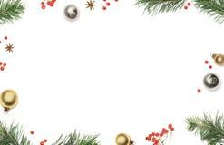 De Kerstmissamenstelling met de takken van de pijnboomboom, Kerstmisdecoratie, rode bessen en steranijsplant op witte achtergrond Royalty-vrije Stock Fotografie