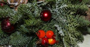 De Kerstmissamenstelling van pijnboom vertakt zich, gouden Kerstmisdecoratie, rode bessen en kunstmatige sneeuw stock afbeelding