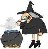 De ketel van heksen stock illustratie