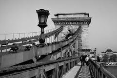 De kettingsbrug van Boedapest in zwart-wit Stock Foto