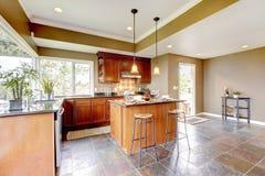 De keukenbinnenland van de luxe met groene muren. Stock Afbeelding