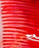 De kieuwen van snoekenvissen Super macro royalty-vrije stock foto's