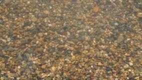 De kiezelstenen op het overzeese strand wordt gewassen door water, close-up Textuur van overzeese kiezelstenen stock video