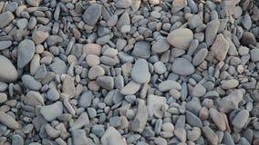 De kiezelstenen op het strand sluiten omhoog stock footage