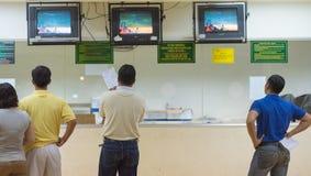De kijkers letten windhond op races Stock Afbeeldingen